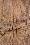Den gamla knöt spruckna busen texturerade plankan - detalj Royaltyfria Bilder