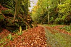 Den gamla kullerstenstenvägen fodrade vid steniga milstolpar i djup bergsklyfta i gamla orange sidor för höstskog Royaltyfri Bild