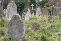 Den gamla kyrkogården, gemensamma Southampton Arkivfoto