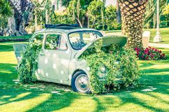Den gamla lilla bröllopbilen på gräsplanträdgård nära blommar och sidor Royaltyfria Foton