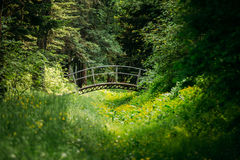 Den gamla lilla dekorativa bron i sommarträdgård parkerar skogen royaltyfria bilder