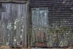 Den gamla mossa och formen täckte panelbrädasidingen av fis för en hummerskeppsdocka Royaltyfri Foto
