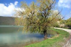 Den gamla pilen på kusten av dammet och till Abrau-Durso Royaltyfria Bilder