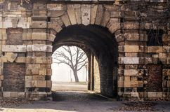 Den gamla porten leder till parkera i morgonmisten Royaltyfria Bilder