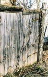 Den gamla porten Trä royaltyfria bilder