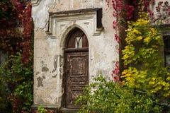 Den gamla röda dörren i hösten parkerar, den Koenig slotten, Ukraina Royaltyfri Foto
