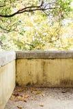 Den gamla slottväggen på höstguling lämnar bakgrund Portugal den Pena slotten Royaltyfria Foton