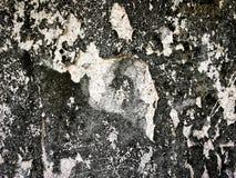 Den gamla smutsiga väggen med bär ut målarfärg för textur Royaltyfria Bilder