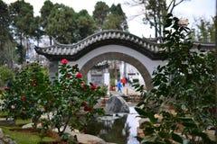 Den gamla staden av Dali, Yunnan, Kina - beskådar av gatan och parkerar, tempel, traditionell kinesisk arkitektur och liv arkivfoton