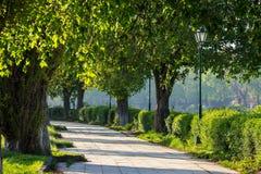 Den gamla staden parkerar med lyktan Royaltyfria Bilder