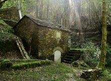 Den gamla stenen maler i skogen Arkivbilder