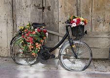 Den gamla svarta cykeln vände in i en blommaskärm i Matera, Italien Fotografering för Bildbyråer