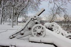 Den gamla täckte kanonen och träd snöar efter vinterstormen Fotografering för Bildbyråer