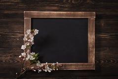 Den gamla tappningskolan kritiserar med blommor arkivbilder