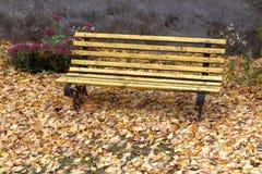 Den gamla träbänken i stad parkerar naturlig tappninghöstbakgrund Arkivfoton