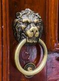 Den gamla trädörren dekorerade med ett lejonhuvud Royaltyfria Bilder