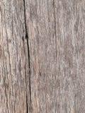Den gamla träväggbakgrunden royaltyfria foton