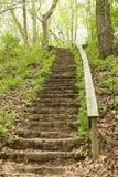 Den gamla trappan parkerar in arkivbild