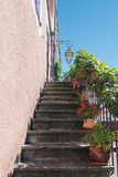 Den gamla trappuppgången dekorerade med växter i blomkrukor Fotografering för Bildbyråer