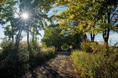 Den gamla vägen mellan träd Arkivfoto