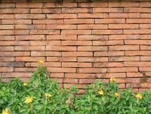 Den gamla väggen för röd tegelsten och busken royaltyfria bilder
