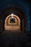 Den gamla walled underjordiska tunnelen Arkivfoto