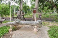 Den gamla wood gungaplatsen har den vita naturen för repet i det trädgårds- trädet Royaltyfri Fotografi