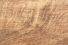 Den gamla wood myreken skrapade, använt som bakgrund Royaltyfri Bild