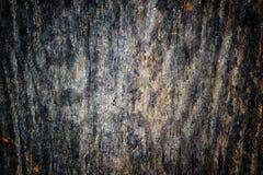 Den gamla wood texturen med naturliga modeller och sprickor på yttersidan som bakgrund Gör mörkare från mitt Arkivfoton