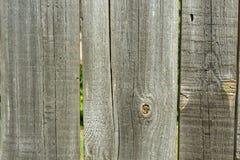 Den gamla wood texturen med naturliga modeller med sprucken färg, bakgrund fotografering för bildbyråer