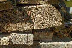 Den gamla wood texturen med naturliga modeller med sprucken färg, bakgrund royaltyfria bilder