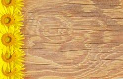 Den gammal wood ramen och bakgrund med solen blommar Arkivbilder