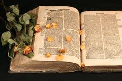 den gammala bokbilden öppnar Royaltyfri Fotografi