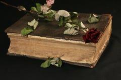 den gammala bokbilden öppnar Royaltyfria Bilder