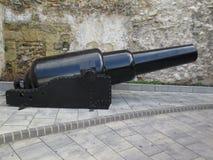 den gammala kanonen kriger Arkivbilder