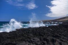 Den gammala pir på den Whittington stranden parkerar, hawaii Royaltyfri Foto