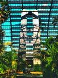 Den Garfield drivhuset arbeta i trädgården i Chicago royaltyfri foto