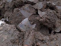 In den Garten graben, Boden sehr feucht und klebrig stockfotografie