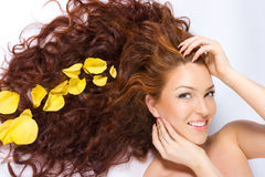 In den gelben rosafarbenen Blumenblättern Lizenzfreies Stockfoto