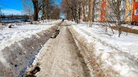 Den gjorde klar vägen i parkera som gjordes ren i vinter i stad, vägen, gjorde ren förbi en solig dag Asfalt i snö bredvid royaltyfri bild