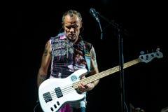 Den glödheta Chili Peppers musikmusikbandet utför i konsert på FIB festivalen royaltyfri foto
