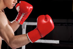 Den gladlynta unga idrottsman nen boxas på cirkeln Arkivbilder