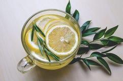 Den Glass koppen av ljust rödbrun te med citronen, rosmarin tjänad som rund ramgräsplan lämnar ruscusblommor på ett ljust trälant Royaltyfria Bilder