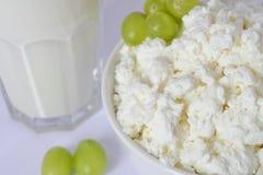 Den Glass koppen med mjölkar, den vita porslinmaträtten med keso, gröna druvor Royaltyfri Bild