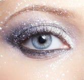 Den glänsande kvinnan synar makeup Fotografering för Bildbyråer