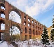 Den Goltzsch dalen överbryggar i vinter Royaltyfri Bild