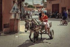 den gottic barcelona för 2008 område barrien kan den platsspain gatan vagn med åsnan marrakesh morocco Arkivfoto