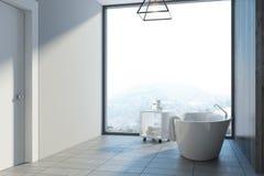 Den gråa badruminre, badar Arkivfoto