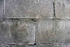 den gråa konkreta tegelstenväggen som är partisk blöter kvarterbakgrund Royaltyfri Fotografi