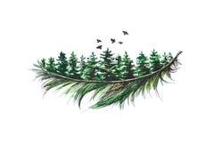 Den gröna barrträds- filialen målas med en svart penna och vattenfärg close upp bakgrund isolerad white vektor illustrationer